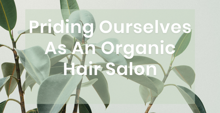 Read more about the article Priding Ourselves As An Organic Hair Salon
