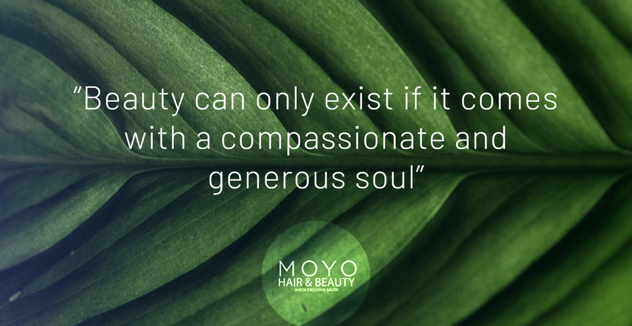 Read more about the article Moyo – Your Organic Hair Salon In Dublin